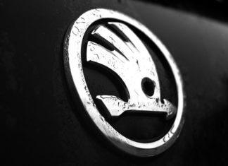 Jak skutecznie znaleźć auta do firmy?